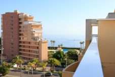 Apartment in Algarrobo - 372 Penthouse Ana
